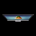 web design appleton wi